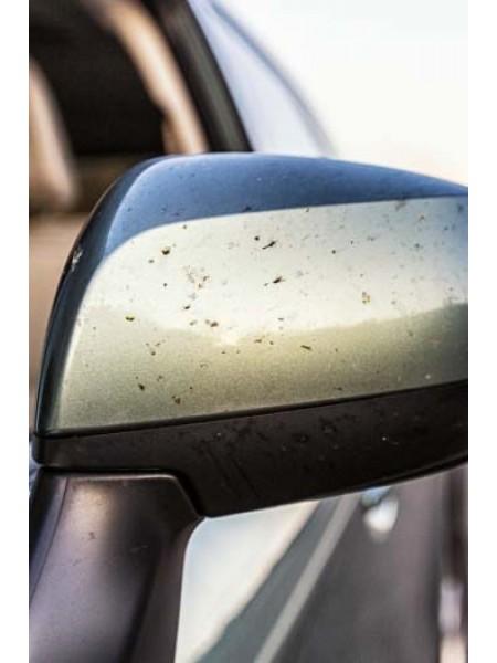 Odstraňovač hmyzu 700ml